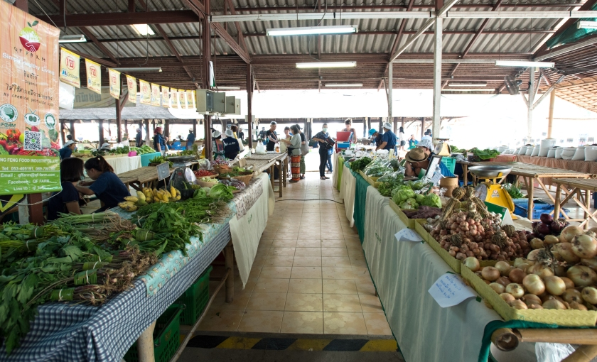 over7seas_Birgit_Deubner_Chiang_Mai_Thailand_JJ_Market_DSC_6437-2_s