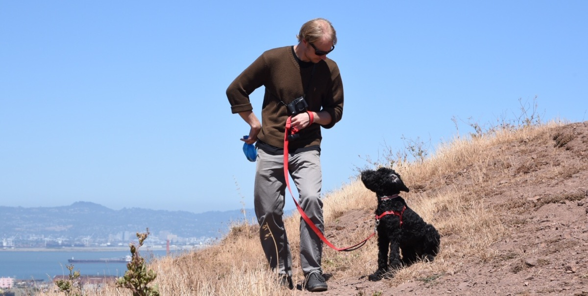 Becoming a paid petsitter / dog walker in San Francisco, California, USA.